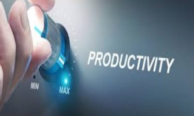 Top 5 Guide Of Achieving High Productivity in Business
