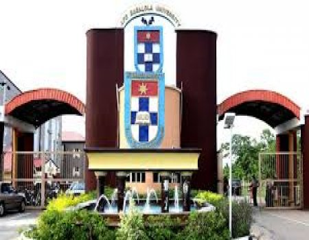 ABUAD Postgraduate Admission Form