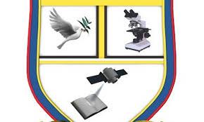 Bingham University Courses