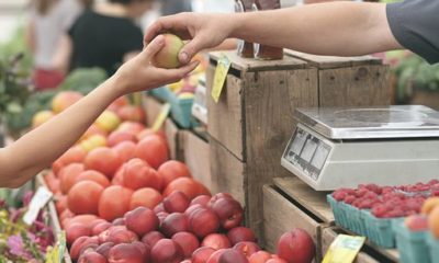 Top tips on How to Start Fruits Selling Business in Nigeria