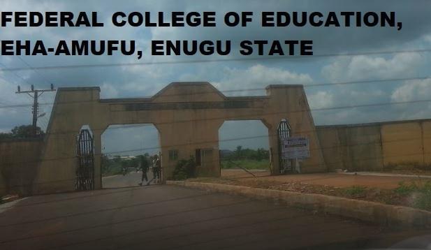 FCE Eha-Amufu Courses